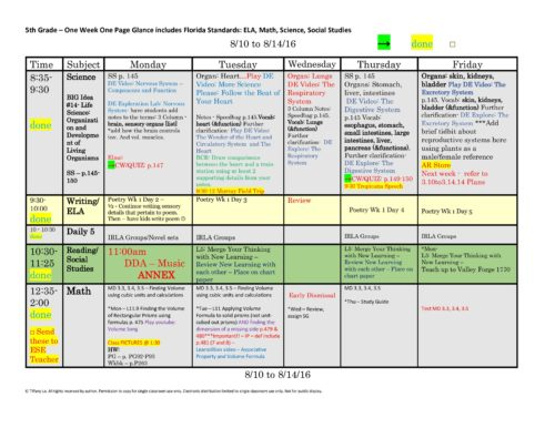 5th Fifth Grade Florida Standards Weekly Lesson Plan Template 1